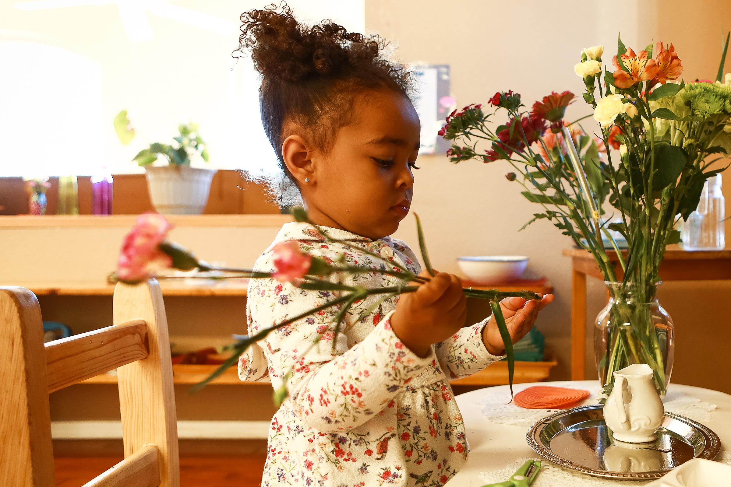 Montessori Programmes Girl Flower Arranging