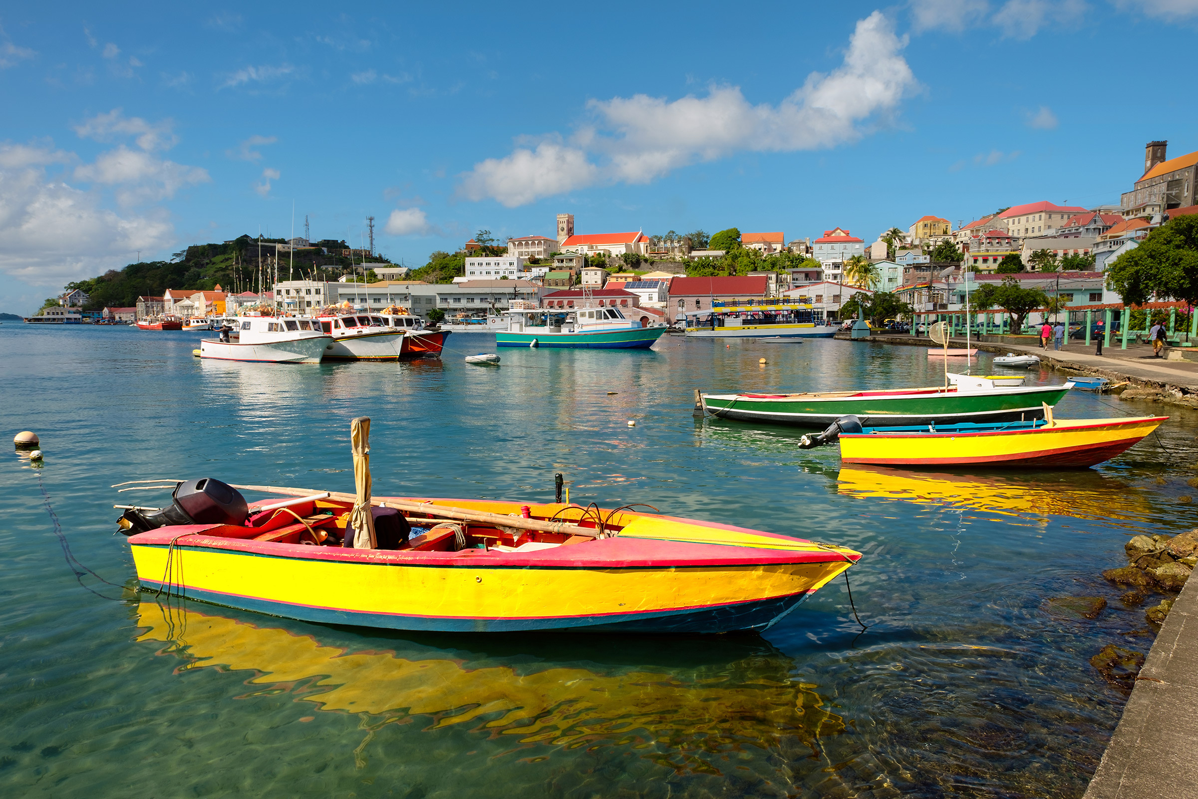 Grenada St. George's Carenaga Harbour