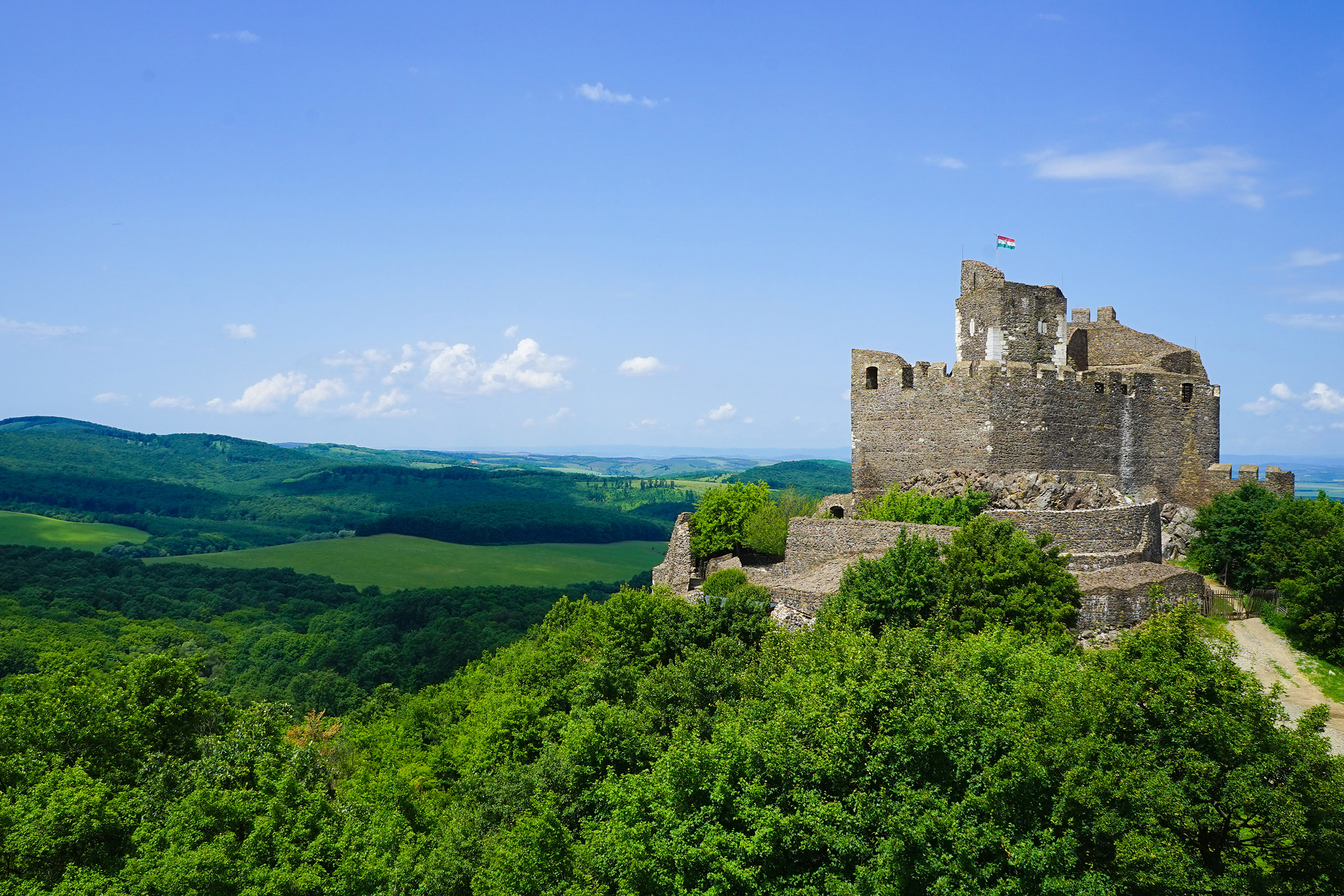 Hungary Holloko