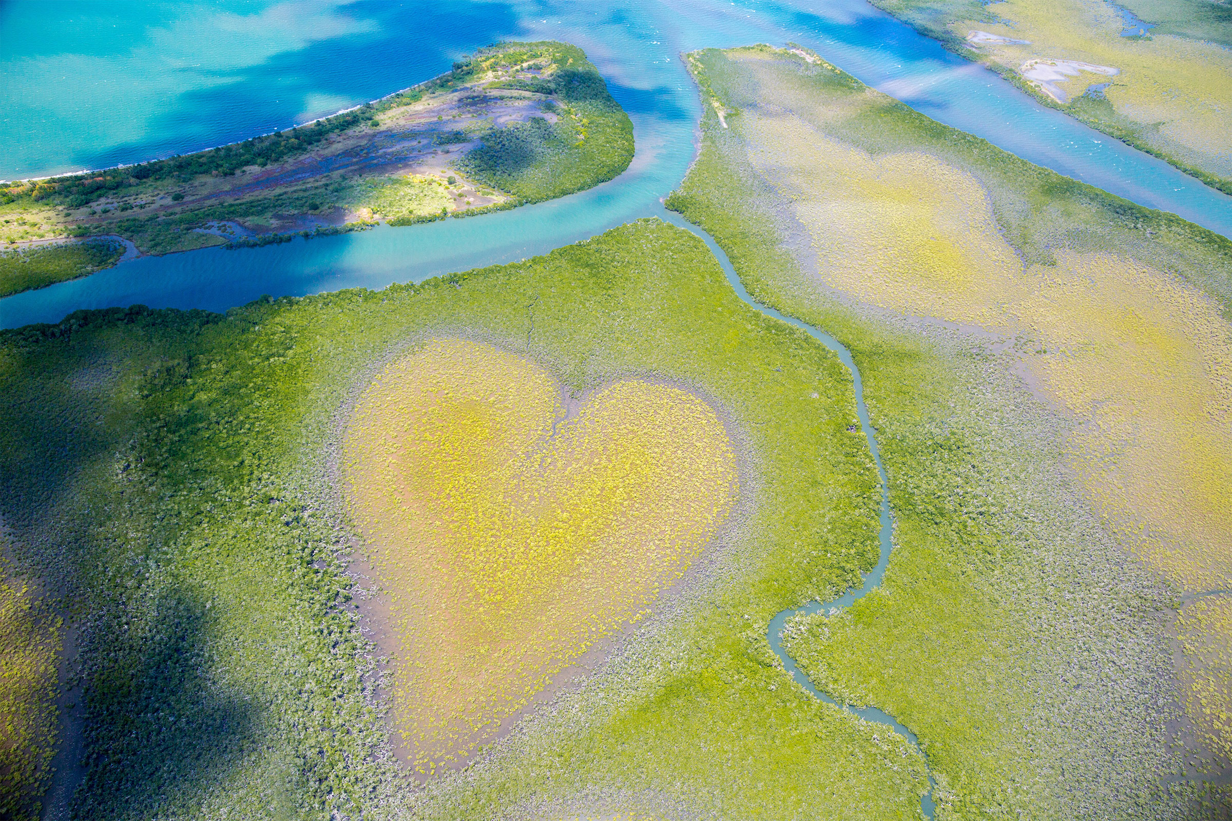Heart of Voh, New Caledonia