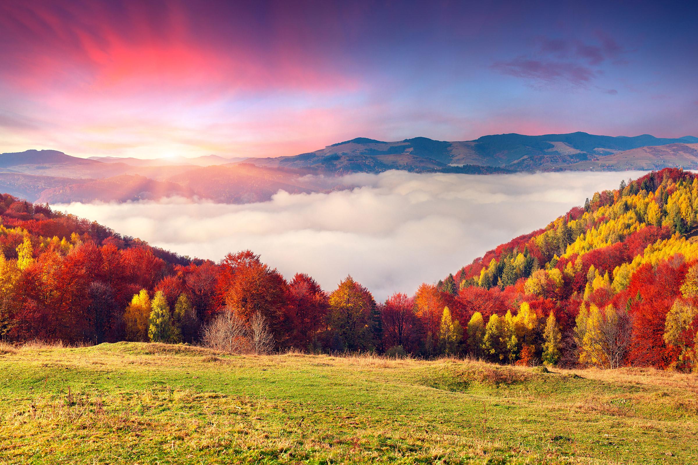 Ukraine Carpathian Mountains