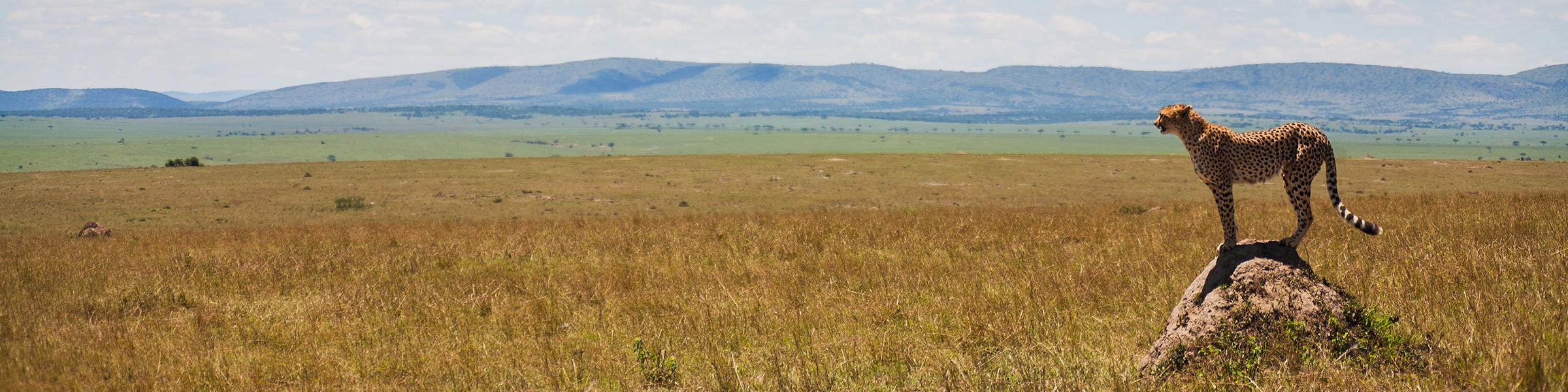 Kenya Maasai Mara National Reserve