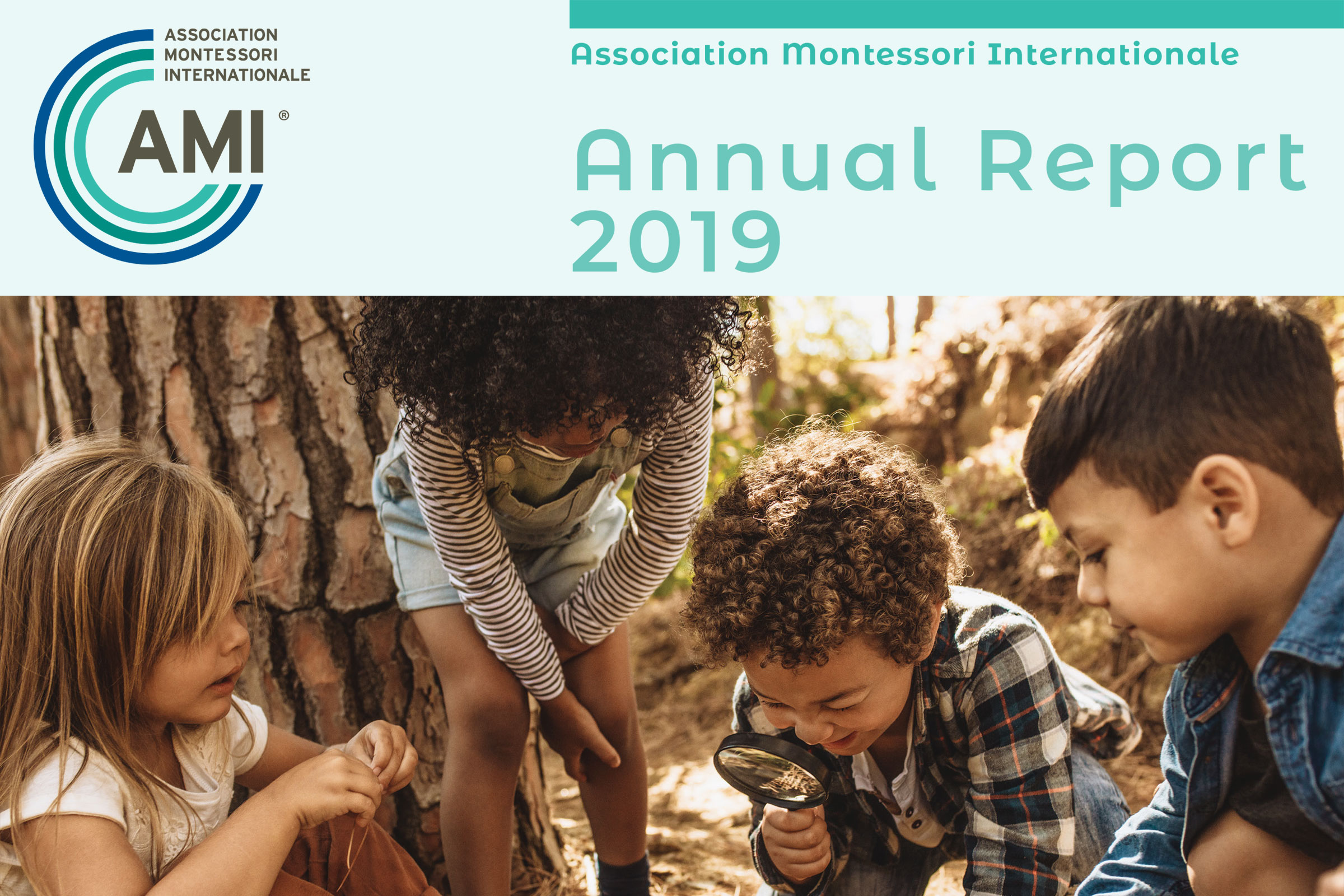 2019 AMI Annual Report Cover
