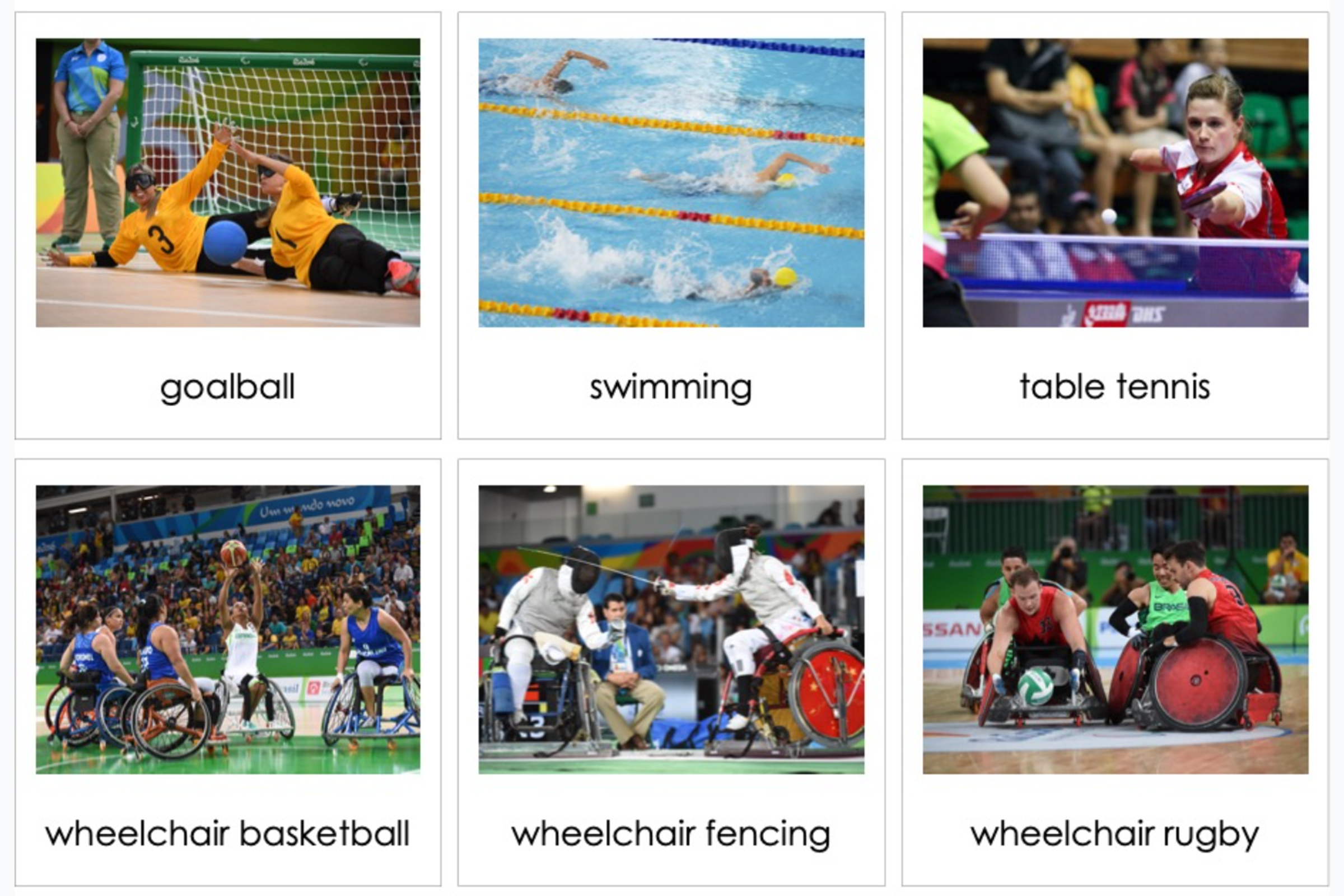 Montessori Classified Cards for Paralympic Games