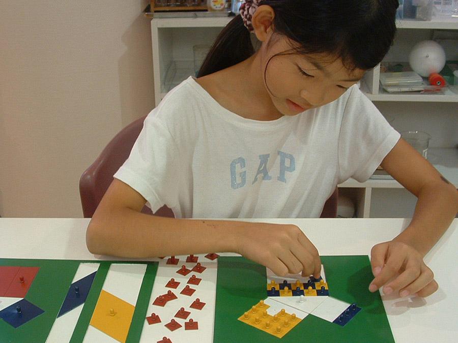AMI Diploma Elementary