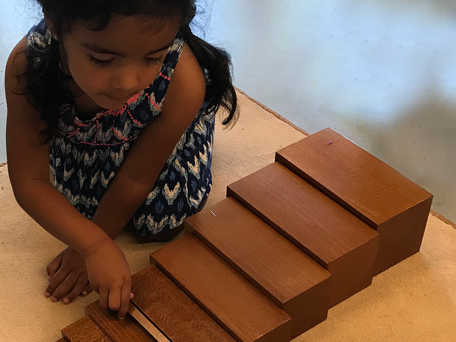 Montessori Quotes: The Child's Work