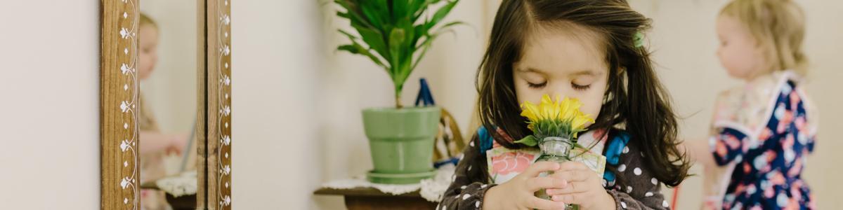 Montessori Programmes